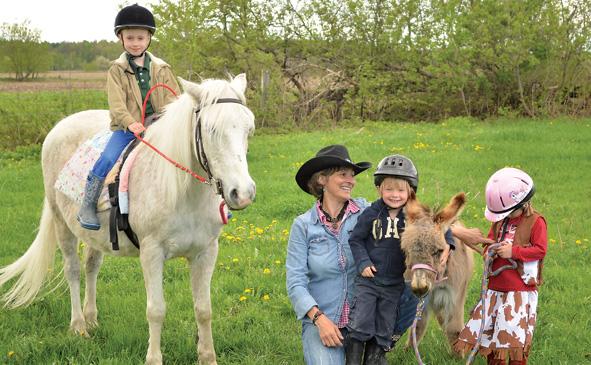 horses-enriching-people