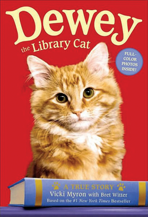 dewey-the-library-cat