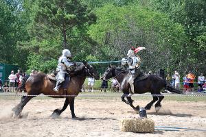 Osgoode Medieval Festival